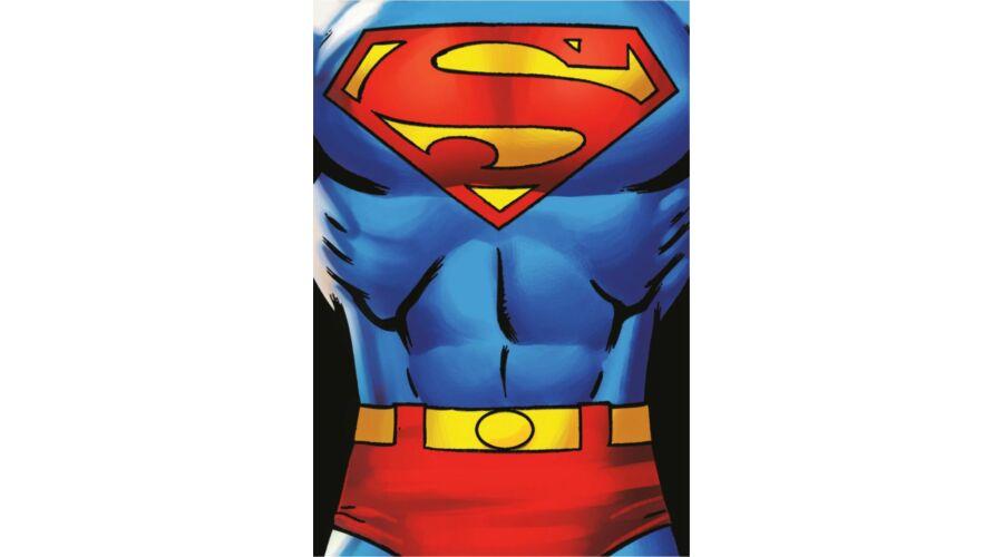 Superman polár takaró pléd gyerekeknek puha anyagból bbe4221e5b